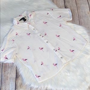 Forever 21 Flamingo button down crop top size sm